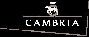 Cambria Vini